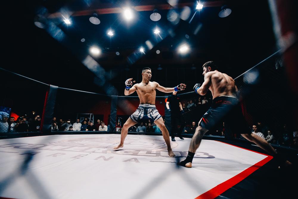 Betting på boxning, MMA och andra slagsmål